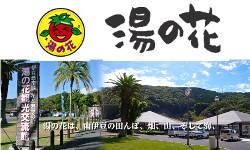 南伊豆町農竹水産物直売所湯の花